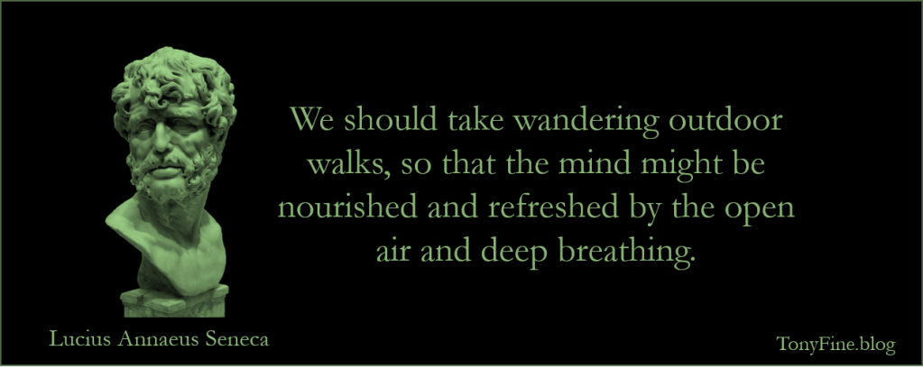 We should take wandering outdoor walks, so that the mind might be nourished and refreshed by the open air and deep breathing. -Seneca